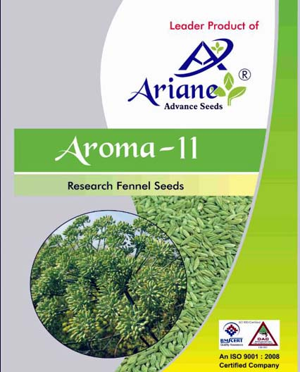 saunf seeds image
